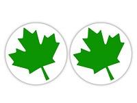 Naklejka poczatkującego kierowcy Zielony listek (2szt.)